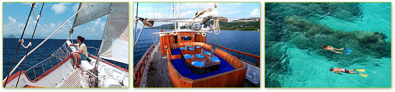 Island Windjammers Cruises - Caribbean Tall Ship Sailing Cruises